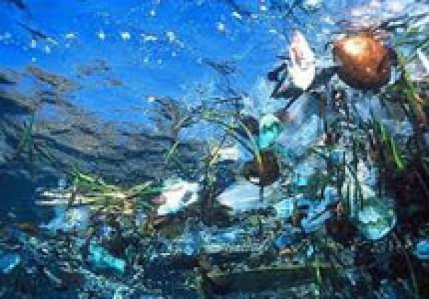 World's deep seas littered with plastic waste